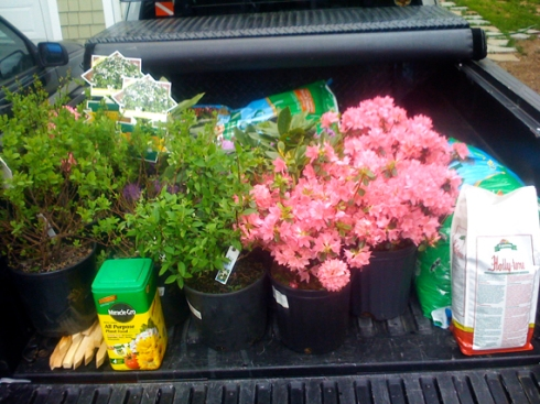 Spring planting around the shop